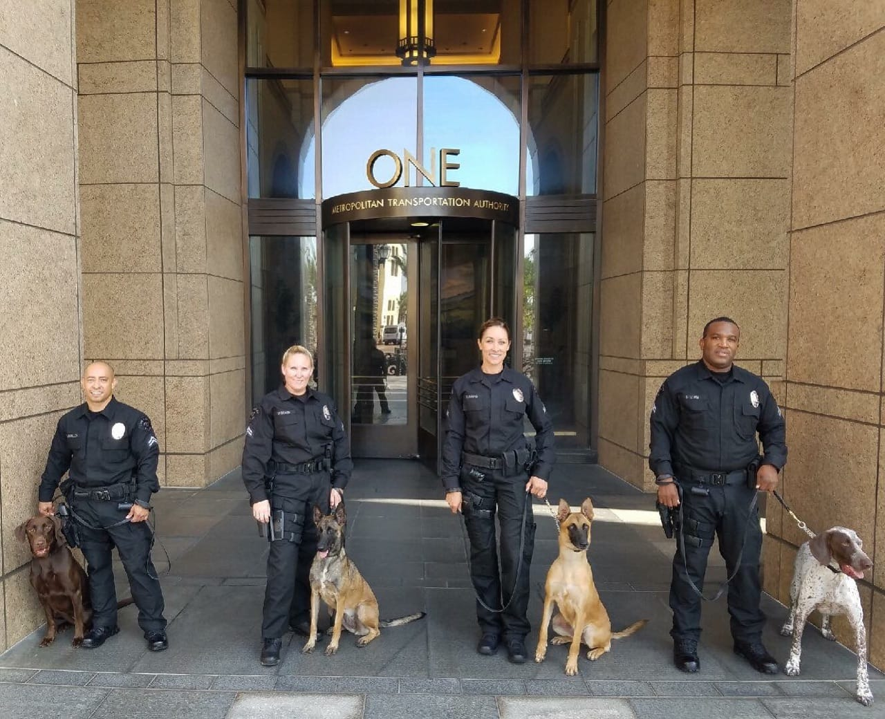 new-lapd-bomb-dogs